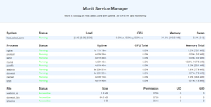 Monit dashboard